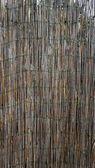Забор бамбука стены вертикальные — Стоковое фото