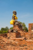 Beautiful temple in Ayutthaya. Thailand. — Stock Photo