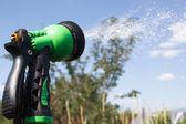 Watering lawn grass with a shower sprayer head — Fotografia Stock