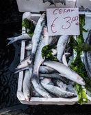 Fish market in Naples — Stock Photo