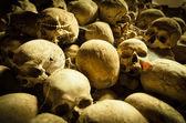 Middle age skulls — Foto de Stock