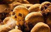 Średniowieczu, czaszek — Zdjęcie stockowe