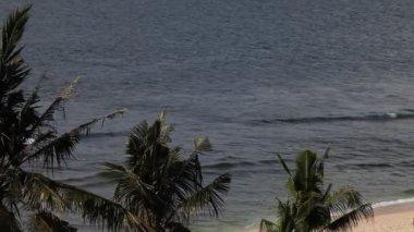 Waves on Ocean Coast — Stock Video