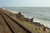 Railroad On The Sea Beach — Stock Photo