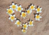 Heart of flowers in the sand. Valentine's Day — Stock Photo
