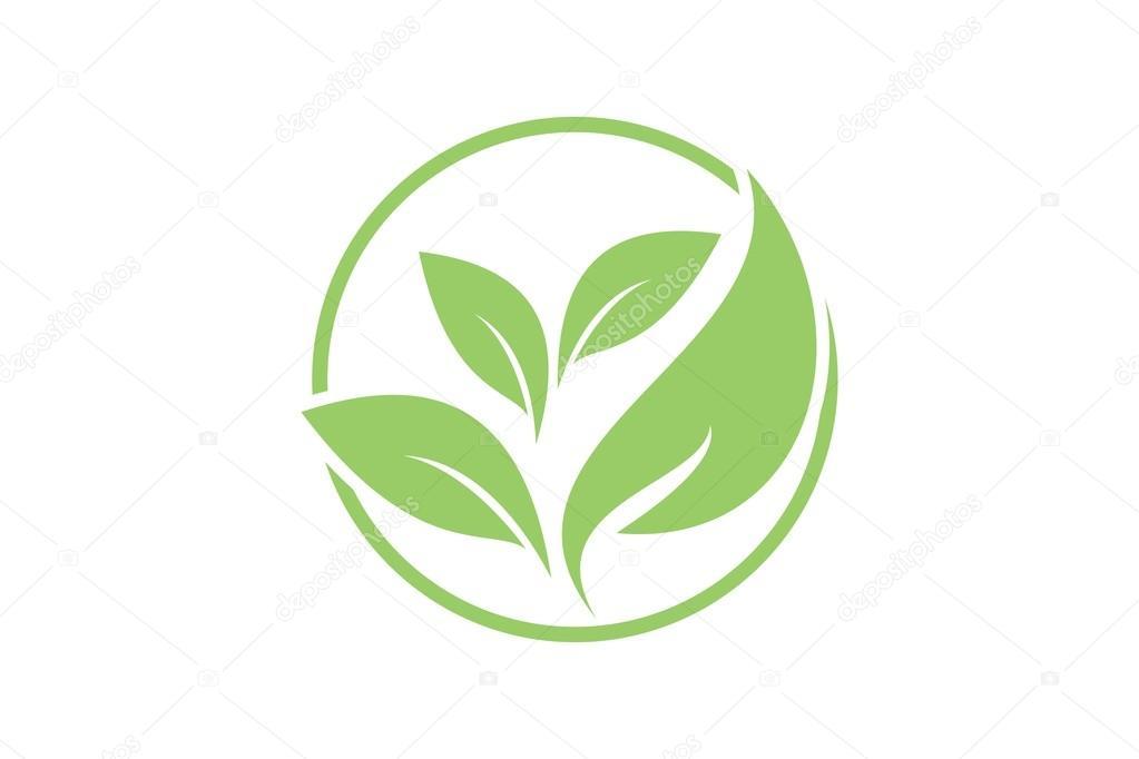 foto de Leaf Logo Template Stock Vector © logojaya #64509333