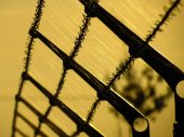 Barbed fence, cobweb in autumn sunset — Stock Photo
