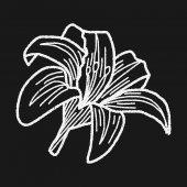 Flower doodle — Stock Vector