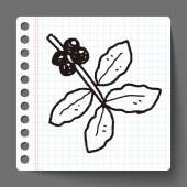 Grano de café fruta doodle — Vector de stock