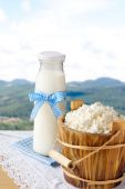 Cottage cheese and milk bottle on nature background — Stock Photo