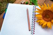 Opened spiral notebook with pencil and sunflower — Stock Photo
