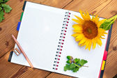 Opened spiral notebook with pencil, sharpener and sunflower — Stock Photo