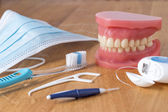 Set of false teeth with cleaning tools — ストック写真