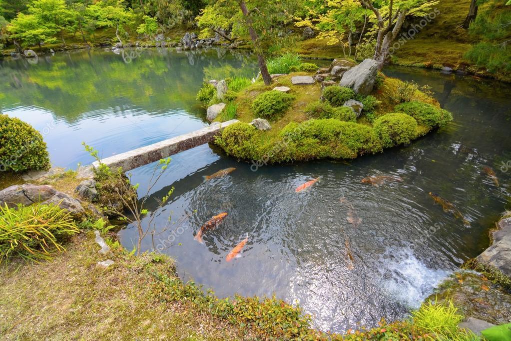 Jard n del estanque japon s tradicional con pescados de la for Estanque japones