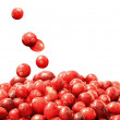 Fresh raw cranberries — Stock Photo #64869939