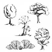 Hand drawn trees set. — Stock Vector