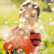 Child blowing dandelion,activity, aspirations, background, beautiful, blow, blowing, boy, bright, casual, cheerful, child, childhood, color, colorful, cute, dandelion, day, dreams, emotion, — Stock Photo #72443833