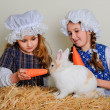 Girl in the hay feeding the Easter Bunny carrots. — Stock Photo #69311869