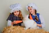 Girl in the hay feeding the Easter Bunny carrots. — Stock Photo