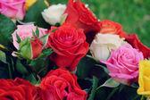 Wedding floristry — Stockfoto