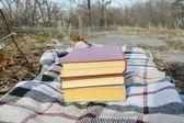 Pile of books on the plaid, park — Stockfoto