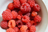 Ripe, juicy, red, organic raspberry close up — 图库照片
