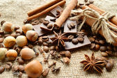 Cinnamon, chocolate, coffee, cloves, hazelnuts walnuts on sacking background — Foto Stock