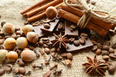 Cinnamon, chocolate, coffee, cloves, hazelnuts walnuts on sacking background — 图库照片