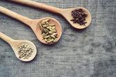 Seasonings,spices,recipe book,Notepad,write,pepper, peas,red pepper,black pepper,cardamom,star anise,cinnamon,coriander,cinnamon sticks,cloves,star — Photo