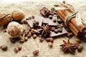 Cinnamon, chocolate, coffee, cloves, hazelnuts walnuts on sacking background — Stockfoto