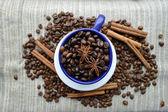 Cup full of coffee beans, cinnamon sticks, star anise, closeup — ストック写真
