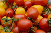 Big red tomato on a white table close up — Stock Photo