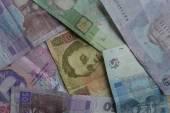 Ukrainian money, wallet, finance — Stock Photo