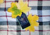 Phone on yellow autumn leaves — Stock Photo