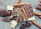 Various pieces of chocolate and cinnamon and anise — Stock Photo