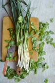 Spinach and young green garlic — Stock Photo