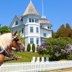 Wedding Cake Cottage on West Bluff Road - Mackinac Island — Stock Photo #65746207