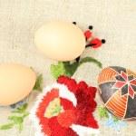Eggs — Stock Photo #67647975