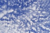 Beautiful blue sky covered with small white clouds — Stock Photo