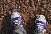 Detail of trainers on dry ground — Stock Photo