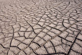 Drought at the Bisti Badlands, New Mexico, USA — Stock Photo
