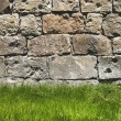 Close up brick wall background with green grass — Stock Photo #73926749