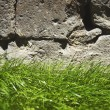 Close up brick wall background with green grass — Stock Photo #73926757