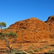 Kings Canyon, Nothern Territory, Australia — Stock Photo #65985917