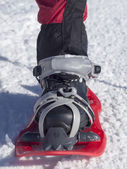 Foot in snowshoe. — Stock Photo