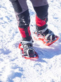 Feet in snowshoes. — Foto de Stock