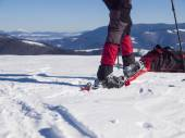 Snowshoes for walking on snow. — Stock Photo