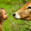 Smiling ten year-old girl with a cow — Stock Photo #78206776