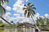 Tropical paradise with palms, bridge and water. — Стоковое фото