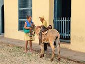 Trinidad, Cuba -Genre sketch with a donkey in Trinidad, Cuba on May 3, 2014. — Zdjęcie stockowe